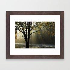 A Hazy Kind of Morning Framed Art Print
