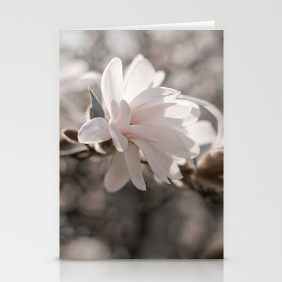 Magnolia Dreaming Stationery Card