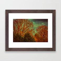 Trees, Trees, Trees Framed Art Print