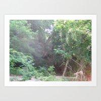 Jungle Summer in Virginia Art Print