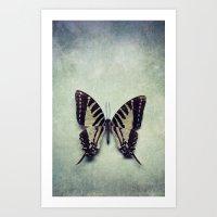 Vintage Butterfly 5 Art Print