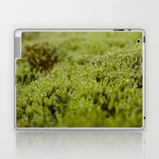 Field of Green Laptop & iPad Skin
