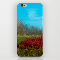 Winter is quickly approching. iPhone & iPod Skin