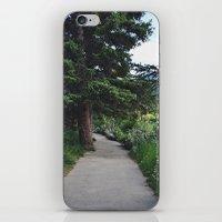 Banff iPhone & iPod Skin