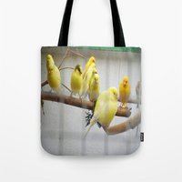 9 Canary Islands and a Colorín Tote Bag