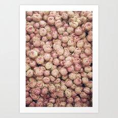 Flower Market 1 - Pink Roses  Art Print
