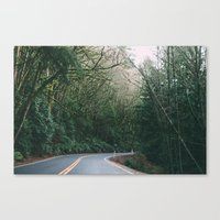 drive through the woods Canvas Print