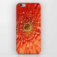 The Future's Bright..... iPhone & iPod Skin