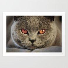 Tomcat Diesel Art Print