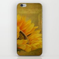 Sunflower Magic iPhone & iPod Skin