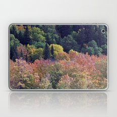 Autumn Hillside Laptop & iPad Skin