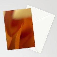 Sensitive kind Stationery Cards
