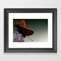I Spread My Wings Framed Art Print