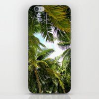 Maldivian Palm iPhone & iPod Skin