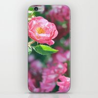 Lily Pulitzer Roses iPhone & iPod Skin