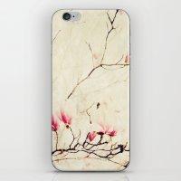 Spring Botanical - Tulip… iPhone & iPod Skin