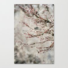 ICICLE BRANCHES Canvas Print