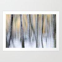 Silver Birch Movement Art Print
