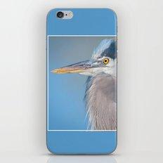 Great Blue Heron iPhone & iPod Skin