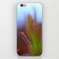 Fairy Like Sundew - JUST… iPhone & iPod Skin