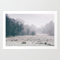 Rural Field Covered In F… Art Print