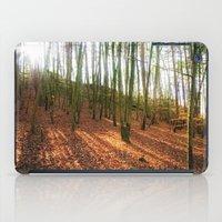 Autumn Sun And Shadows iPad Case