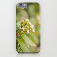 iPhone & iPod Case featuring Autumn Day by SC Photography