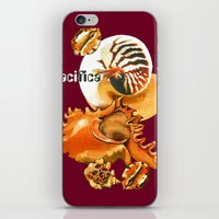 Pacifica 1 - South Pacific Seashells iPhone & iPod Skin