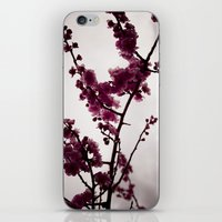 March Notes iPhone & iPod Skin