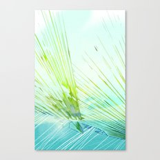 Land Observation Canvas Print