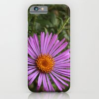 Asters iPhone 6 Slim Case