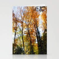 Autumn Sunset. Forest Stationery Cards