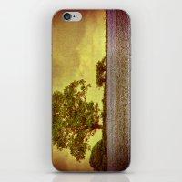 Tree In A Field iPhone & iPod Skin