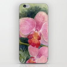 Orchid Beauty iPhone & iPod Skin