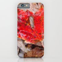 iPhone & iPod Case featuring autumnal reverie 657 by vincent cimino