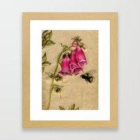 Bumble Bee Framed Art Print