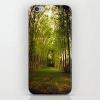 Giants iPhone & iPod Skin