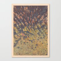 FLEW / PATTERN SERIES 00… Canvas Print