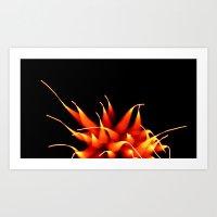 Efflorescence 22 Art Print