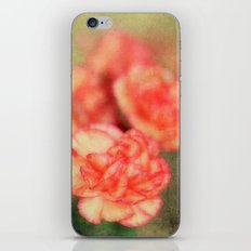 Concrete Carnation iPhone & iPod Skin