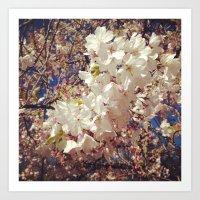 Spring pink Art Print