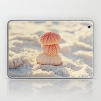 Sea Urchins Laptop & iPad Skin
