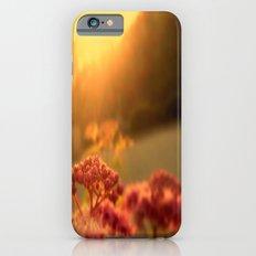 Pink bulb in the Sunrise iPhone 6 Slim Case