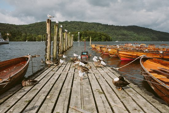 Birds on the Jetty Art Print