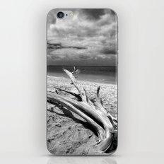 Tropical Beach Driftwood BW iPhone & iPod Skin