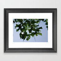Beautiful Green Leaves F… Framed Art Print