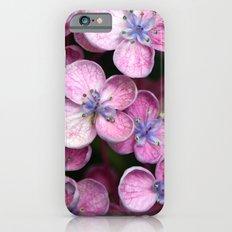 Purple Flowers Slim Case iPhone 6s