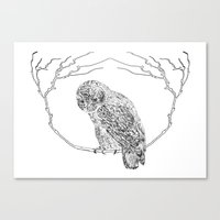 Owl In Tree (Print) Canvas Print