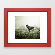 le regard de l'âne Framed Art Print