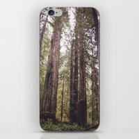 REDWOOD BEAUTY iPhone & iPod Skin